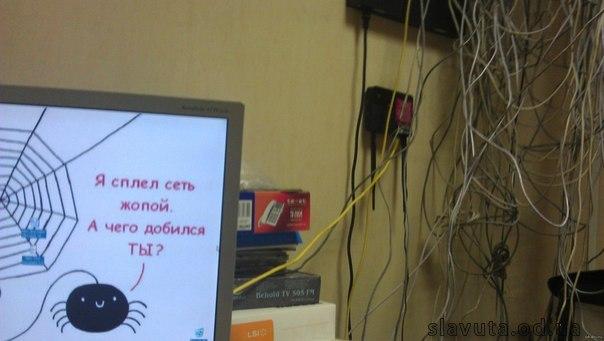 сеть жопой